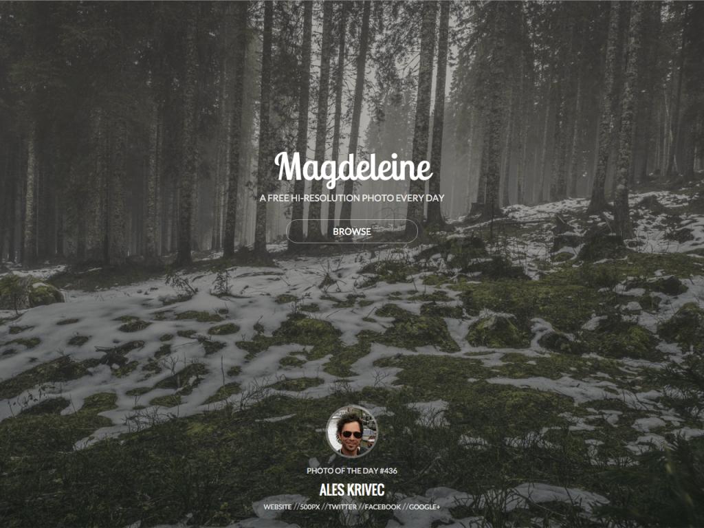 http___magdeleine.co_